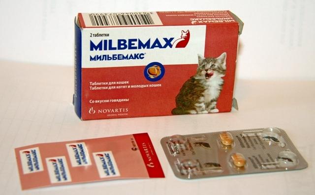 féreggyógyszerek eladása gyógyszer férgek felnőttek számára