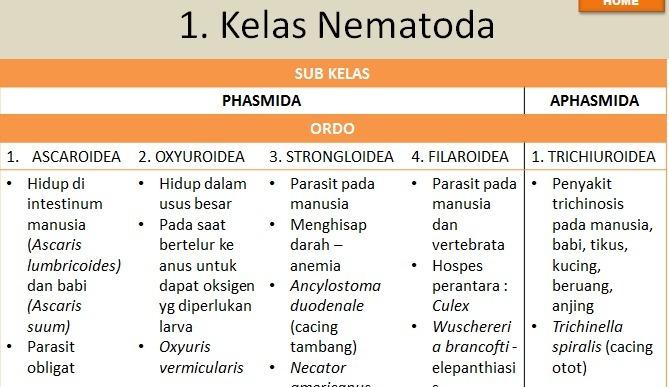 klassifikasi nemathelminthes berdasarkan paraziták harris mod