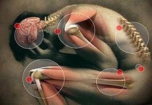 higiénia a férgek kezelése során bélféreg gyógyulasi ideje