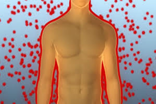 hogyan lehet méregteleníteni a testet