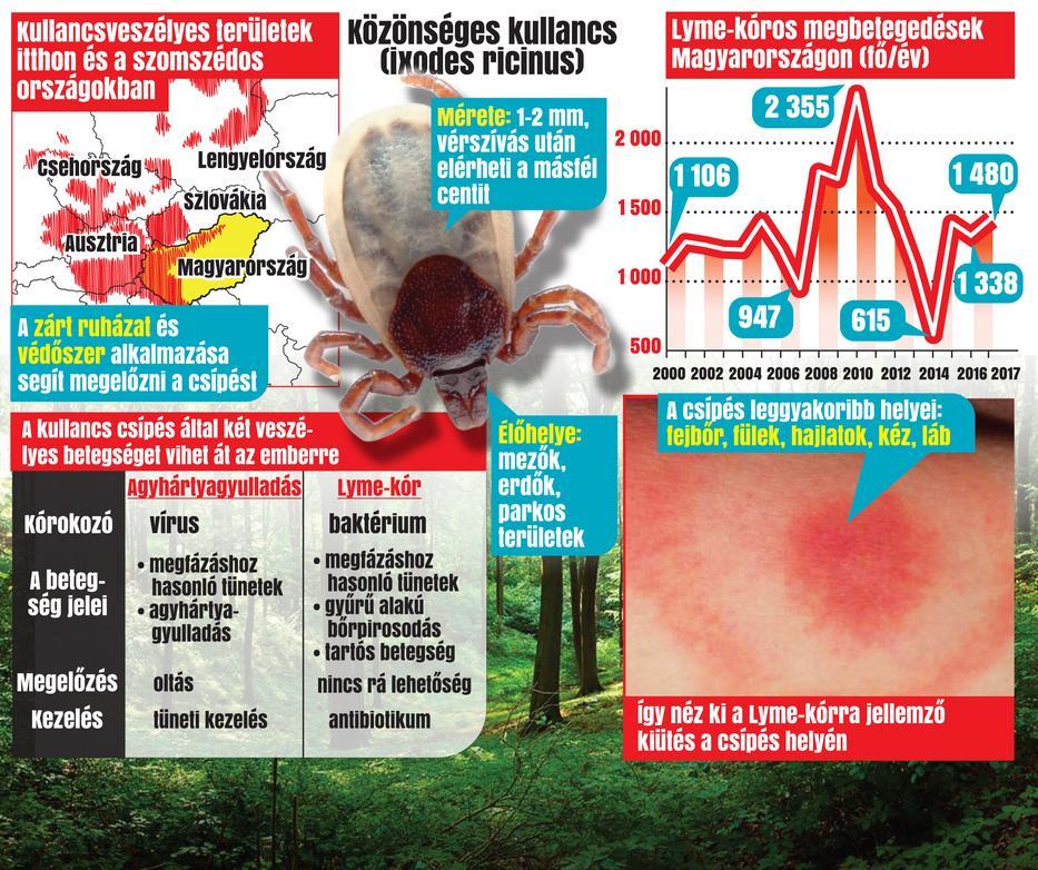 paraziták emberben antibiotikumokkal kezelve