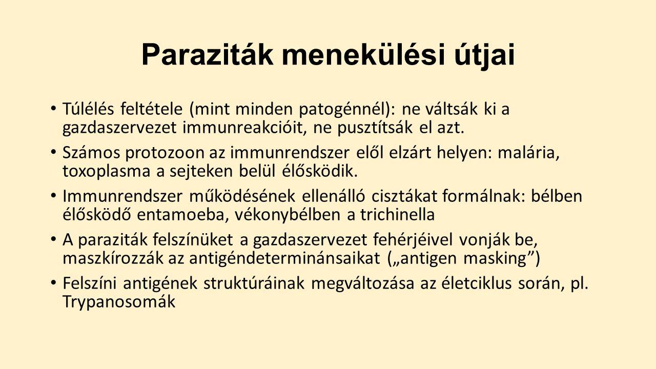 protozoan paraziták emberben ppt