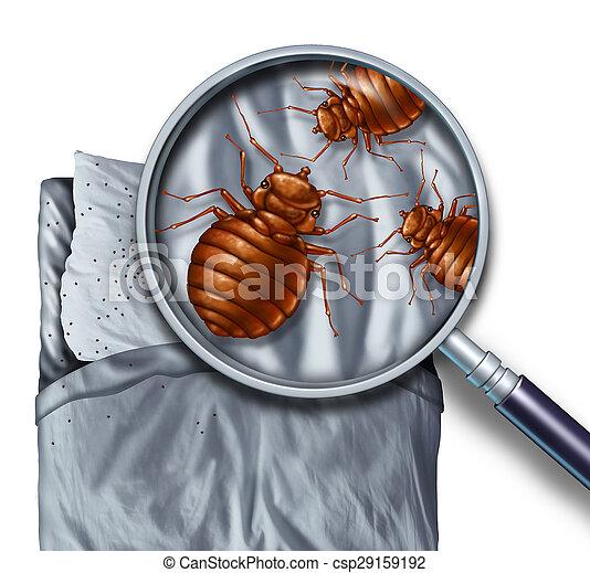 bőr alatti paraziták embereken, hogyan kell kezelni