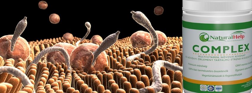 hogyan lehet felismerni a parazitákat