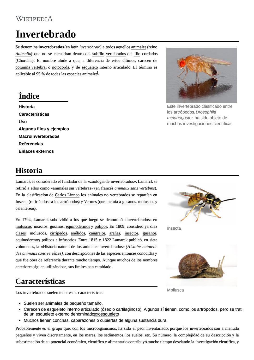 filo nemathelminthes caracteristicas