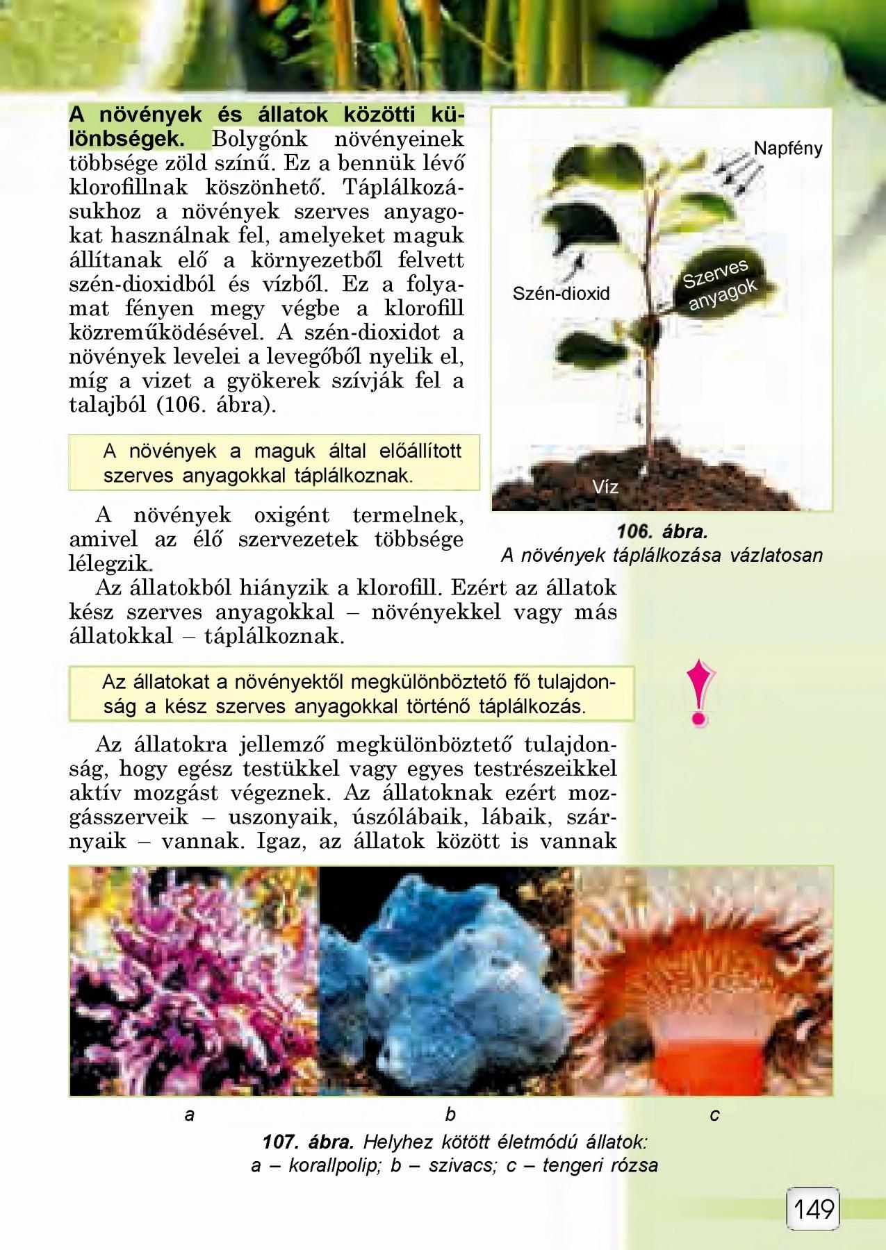 környezet a paraziták számára