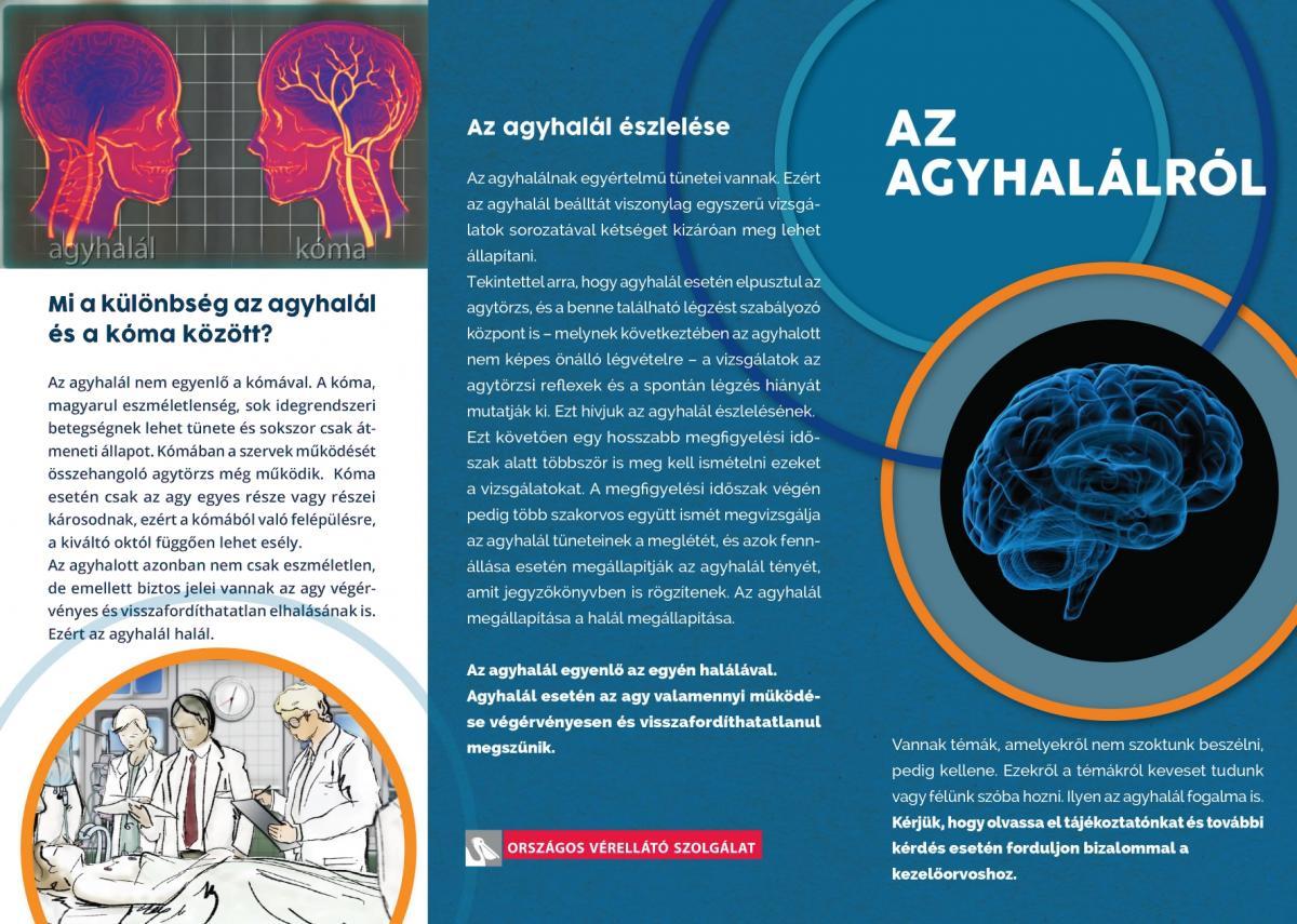 Trichocephalosis: okok, tünetek, diagnózis, kezelés