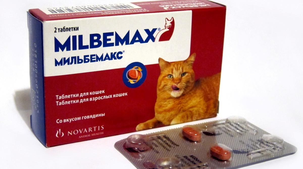 férgek számára a tabletták széles választéka
