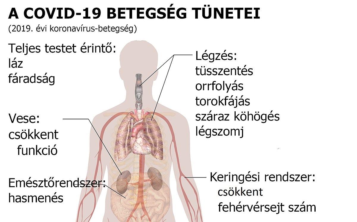 tüdő tünetek kezelése