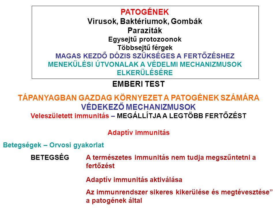 az immunválasz elkerülése a paraziták által tünetek férgek kezelésével