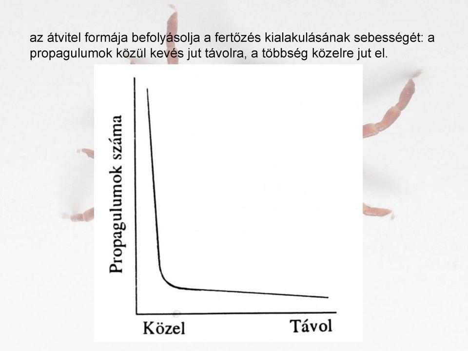 a férgek legenyhébb gyógymódja)