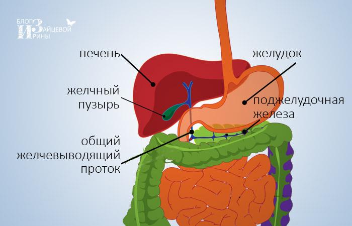 gyógyszer giardia és kerekféreg ellen)