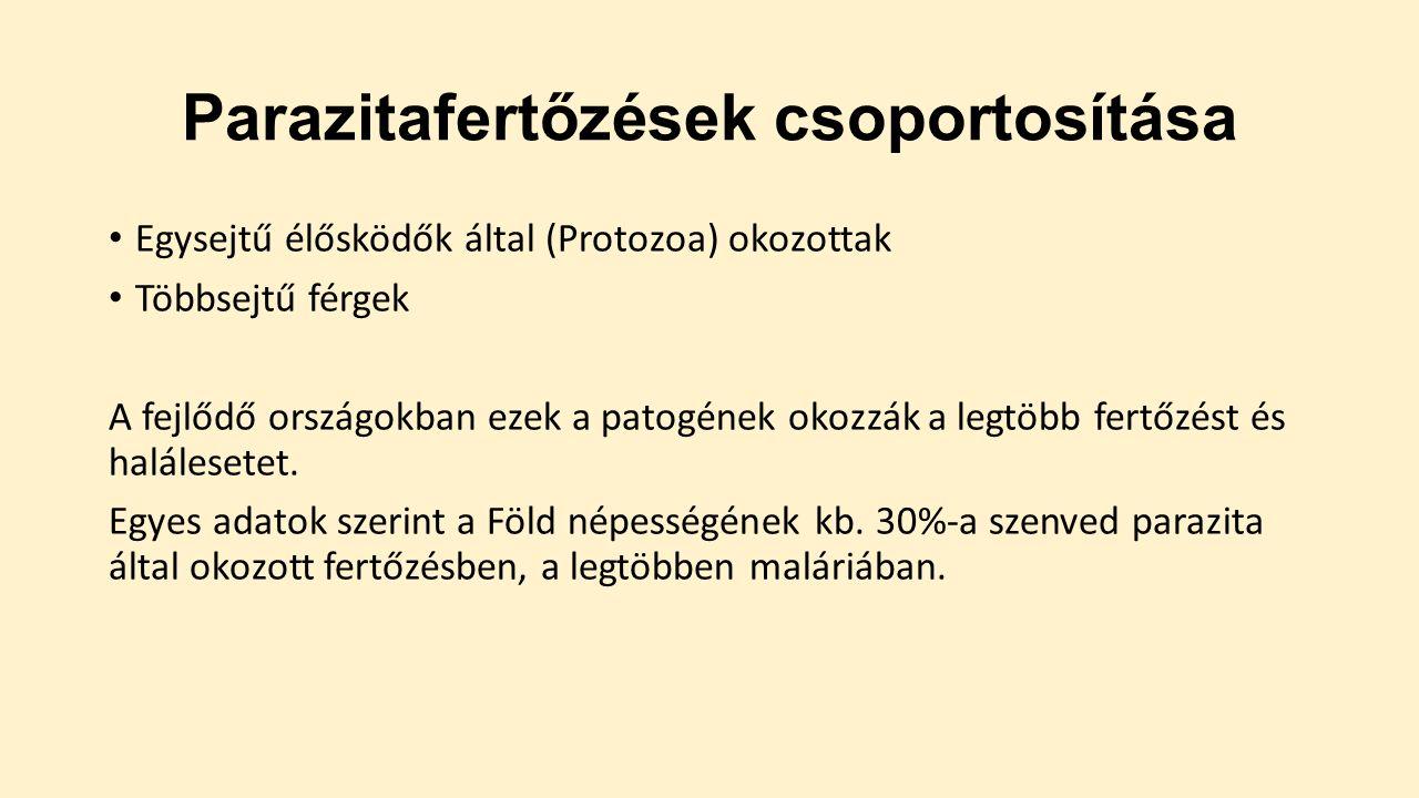 enterobiosis járványellenes intézkedések