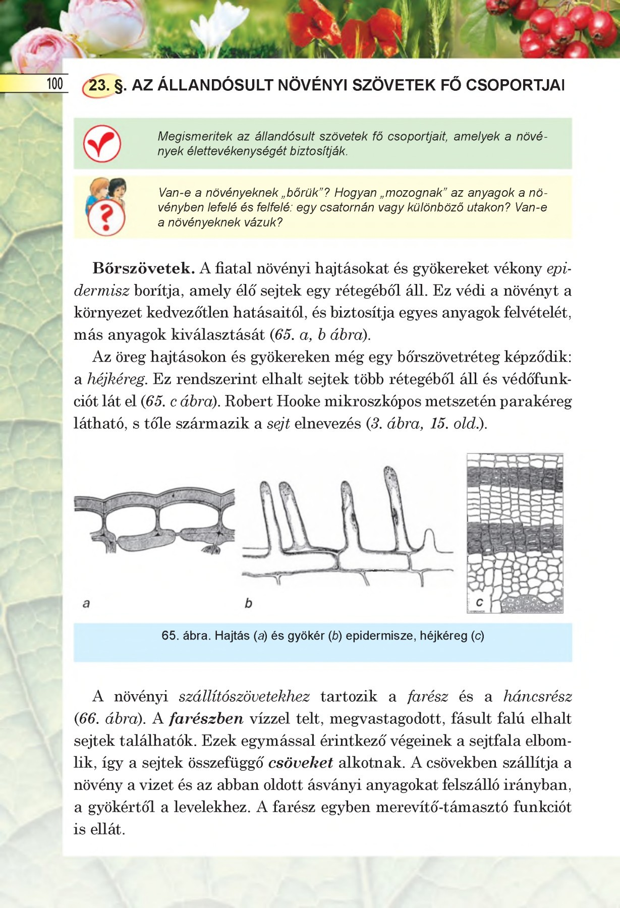 van- e a platyhelmintáknak szervei? parasite giardia in humans treatment