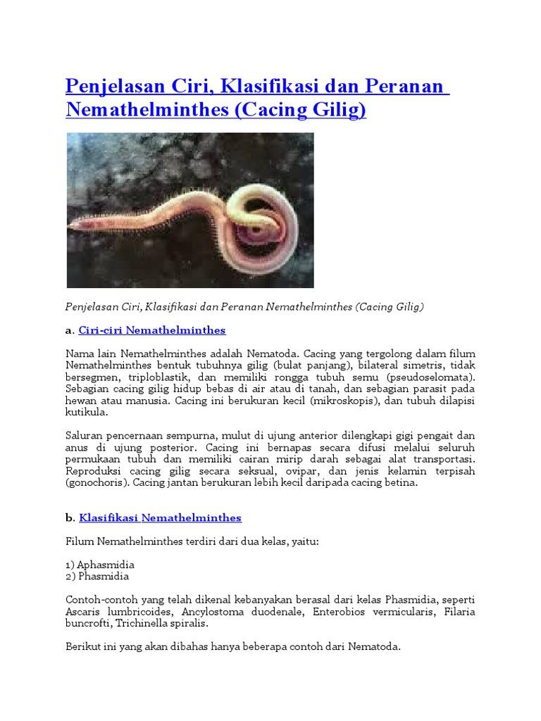 klassifikasi dan peranan nemathelminthes