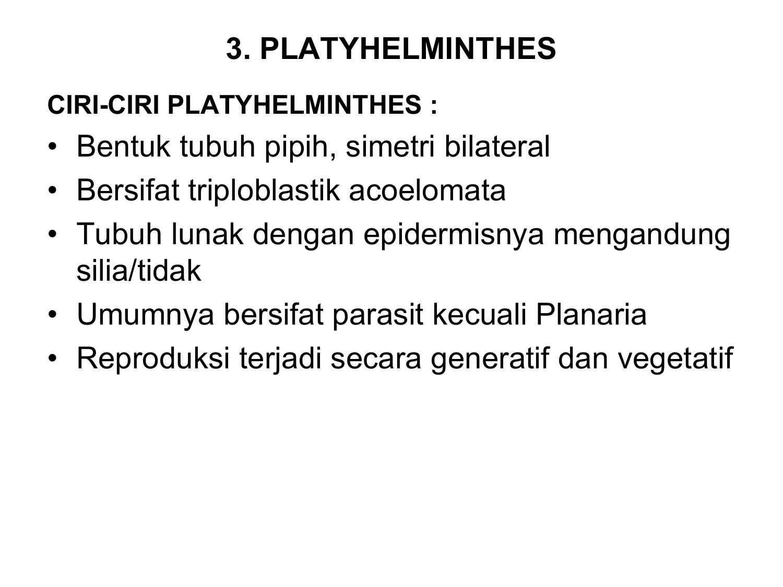 kelas pada filum nemathelminthes milyen gyógyszerek a kerekférgek kezelésére