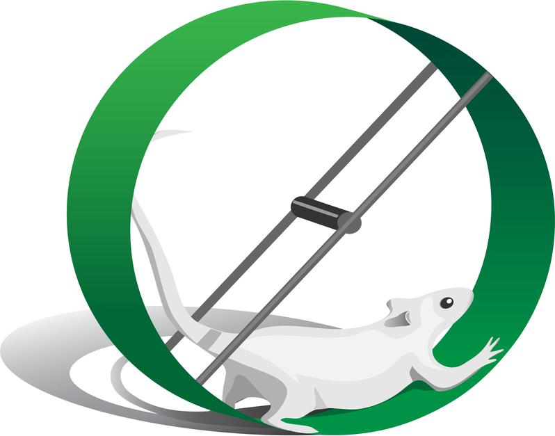 helmint fertőzések és bélgyulladások Paraztok surgut kezelése