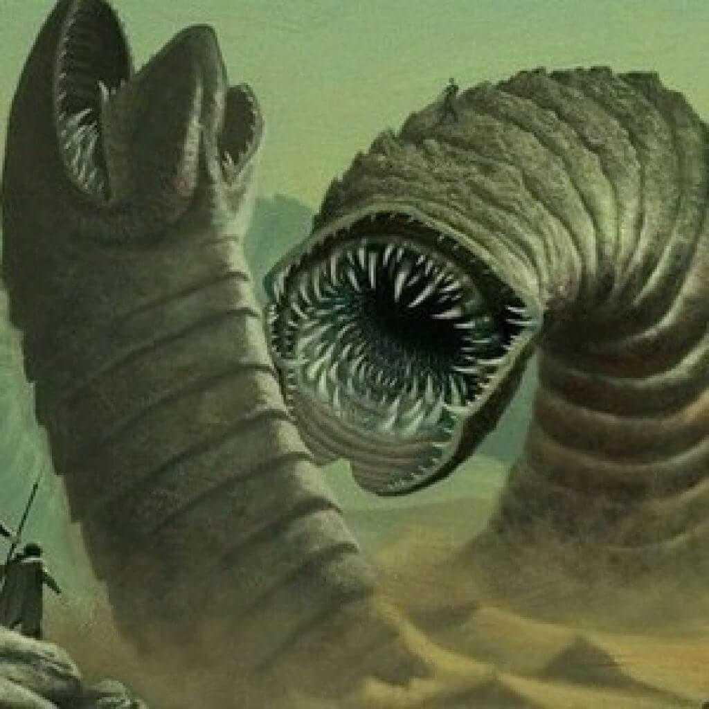 Kerekféreg lárva stádium. Kerek féreg lárva, Galandféreg-fertőzés Centaury fű a férgektől